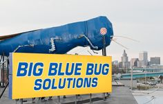 big blue bug