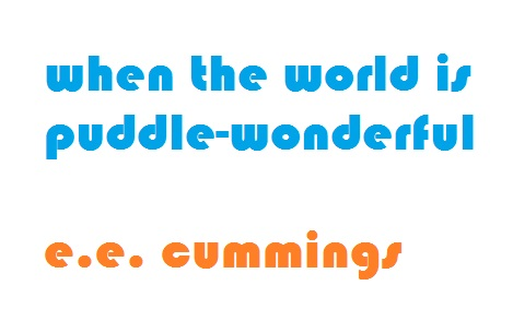 puddle-wonderful