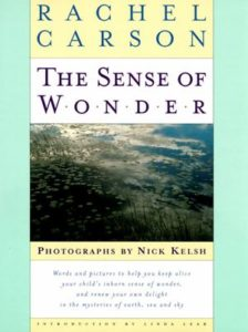 Book cover for Rachel Carson's The Sense of Wonder