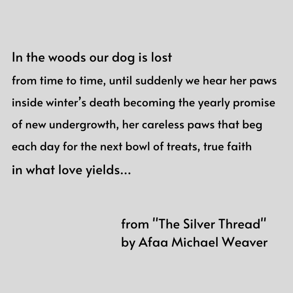 "Shares an excerpt of a poem by Afaa Michael Weaver from ""The Silver Thread."""