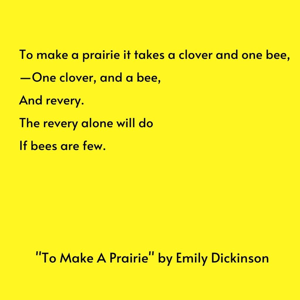 "This shares Emily Dickinson's poem ""To Make a Prairie."""